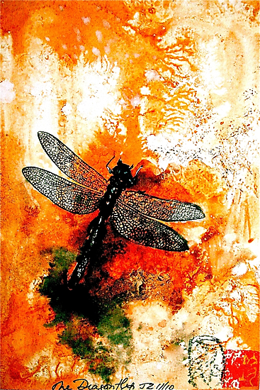 The Nature of Things...The Dragonfly by © Janis Zroback