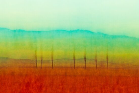 Seven Palms by Rick Gustafson