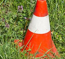 road cone in the meadow by spetenfia