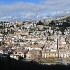 View of Granada  From the Alhambra  by Debra Kurs