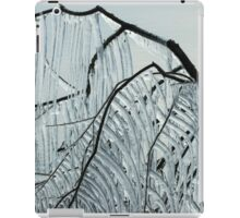 Intricate Ice Curtains iPad Case/Skin