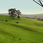 Valley of a Thousand Hills by Chris Chalk
