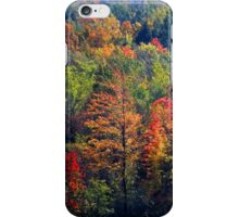 Fall in Franklin iPhone Case/Skin