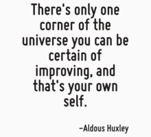 There's only one corner of the universe you can be certain of improving, and that's your own self. by Quotr