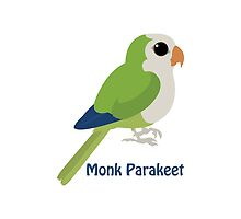 Monk Parakeet by Eggtooth