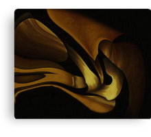 Curvilinear Project No. 303 ( From Beyond ) Canvas Print