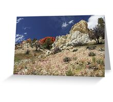 Springtime At Red Rock Canyon Greeting Card