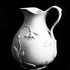 White Pitcher by heatherfriedman