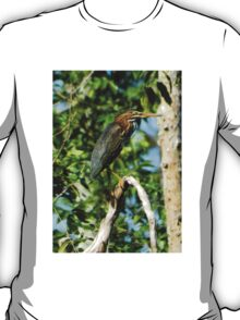 Green Heron on the Scuppernong T-Shirt