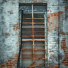 Window in Magnolia by Patito49