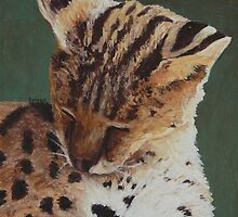 Serval Nap by Margaret Saheed