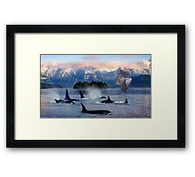 Sail With Sea Wolfs Framed Print