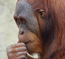 Deep Thinker Junior by Margaret Saheed