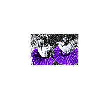 Purple Princesses by odd violet.
