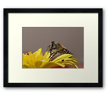 Profile Framed Print