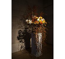 Displaying Mother Nature's Autumn Abundance of Flowers and Colors Photographic Print