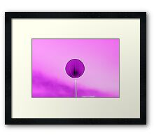 lamppost in the park Framed Print