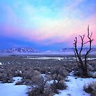 Nevada Winter Pre Sunrise  by SB  Sullivan