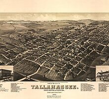 Vintage Pictorial Map of Tallahassee FL (1885) by BravuraMedia