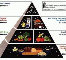 Food Pyramid  by BravuraMedia