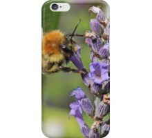 Flying Bumble Bee iPhone Case/Skin