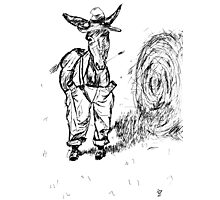 Donkey in a Hat Photographic Print