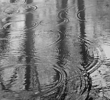 water ripple by alphacastor