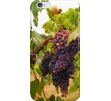 Zinfandel Cluster iPhone Case/Skin