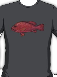 Red Sea Coral Grouper T-Shirt