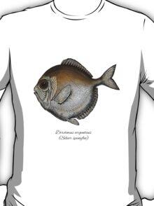 Silver spinyfin T-Shirt