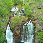 Fabulous Florence Falls by peasticks
