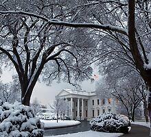 Winter Wonderland White House by BravuraMedia
