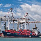 Giant container ship in port by Celeste Mookherjee
