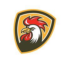 Chicken Rooster Head Mascot Shield Retro by patrimonio