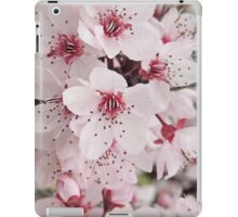 Spring Blossoms #6 - Bathurst iPad Case/Skin