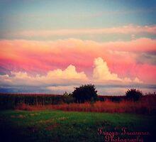 Summertime Sunset Scene by Tracy Jule