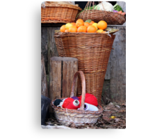 oranges and balls of wool Canvas Print