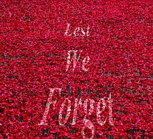Poppies at The Tower of London - Lest we forget by InterestingImag