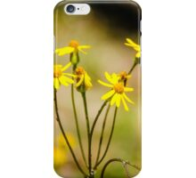 Golden Ragwort iPhone Case/Skin
