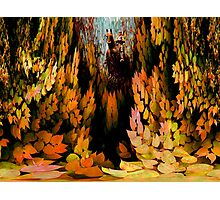 All Must Fall Photographic Print