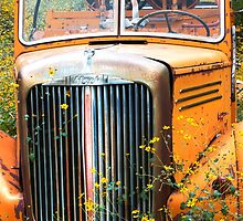 Fire Truck  and Flowers by Candy Gemmill
