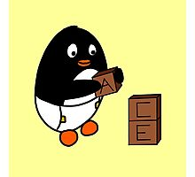 Baby Penguin With Blocks Photographic Print