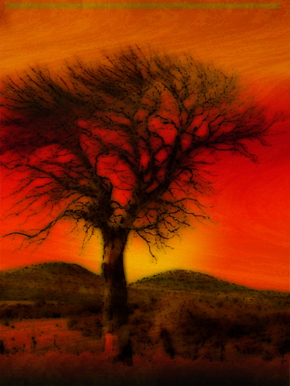 Oil Pastel Tree in Sunset (28,387) by Winona Sharp