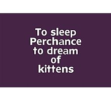 To sleep Perchance to dream of kittens Photographic Print