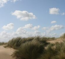 Sand Dunes and Sky by Circe Lucas
