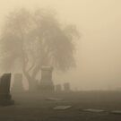 Old Graveyard in Pullman, Washington by Susan Russell