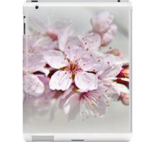 Blossom part 1 iPad Case/Skin