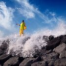 Ocean Tamer by Alex Preiss