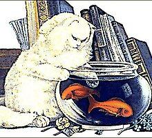 Cat Fishing by AwkwardEggplant