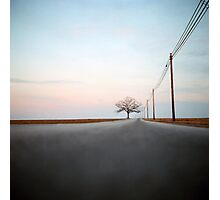 A Lonely Tree on a Long Road Photographic Print